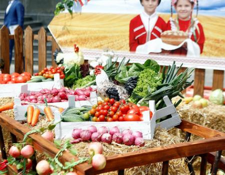 Интерес к аграрному туризму Кубани вырос на 10%