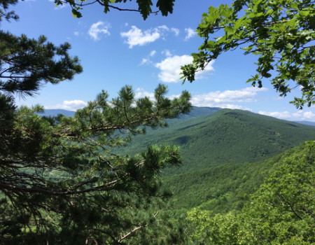 Новый туристический маршрут появится в предгорьях Кавказа