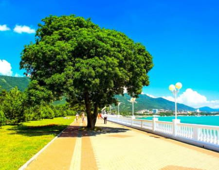 Туристический сезон на Кубани продлится до 1 ноября